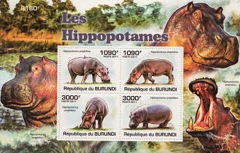 Hippopotamus Stamp Set